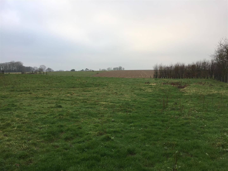 Terrain à bâtir à Gonneville la Mallet (76280)